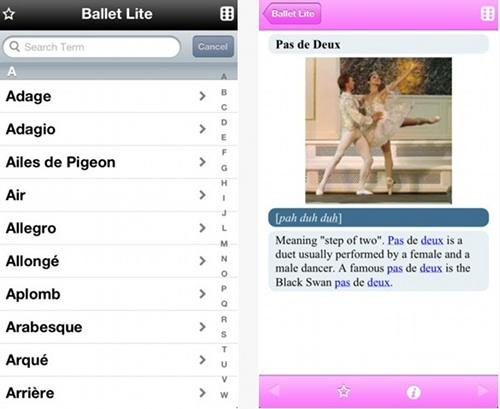 5.balletlite